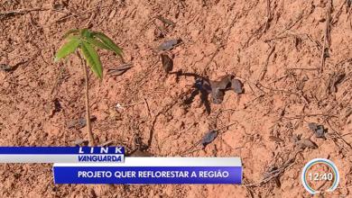 Trabalho do Corredor Ecol�gico � destaque na TV Vanguarda